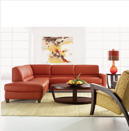 Have Brown Couches What Color Should I Paint My Living Room - Up To ...