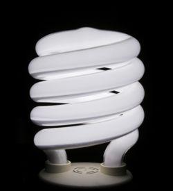 bulb-spiral-flourescent-compact