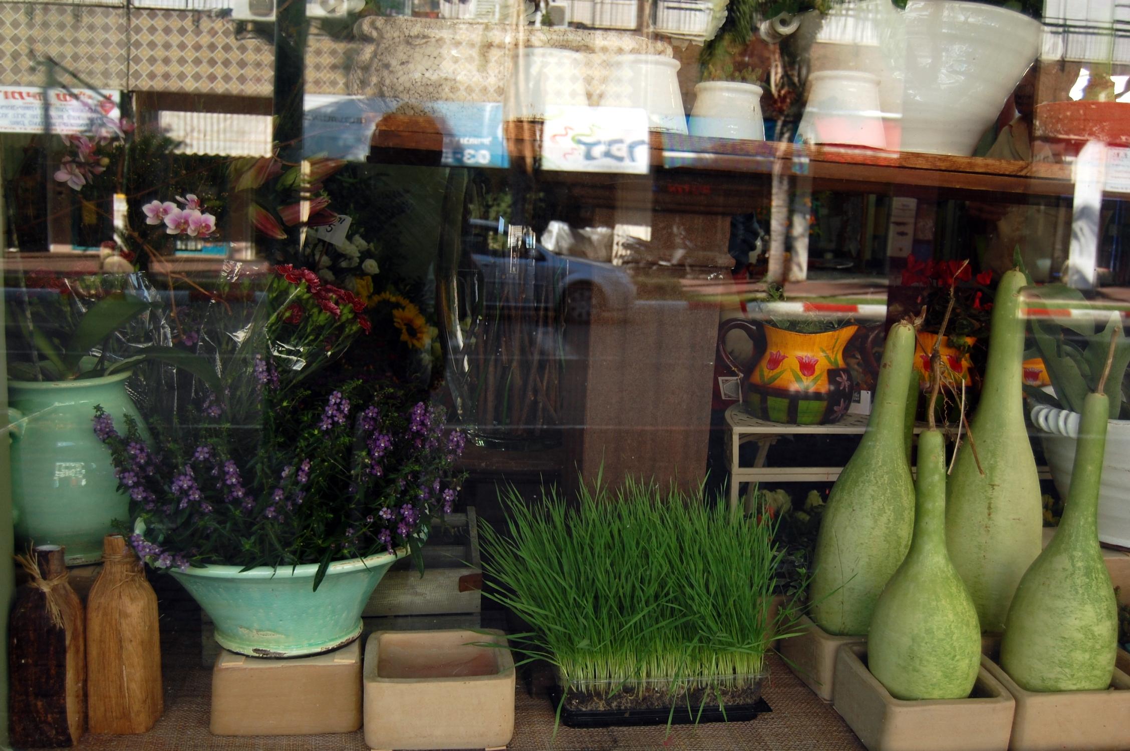 Window Flower arangements